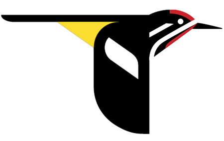 news-imageLab of Ornithology logo